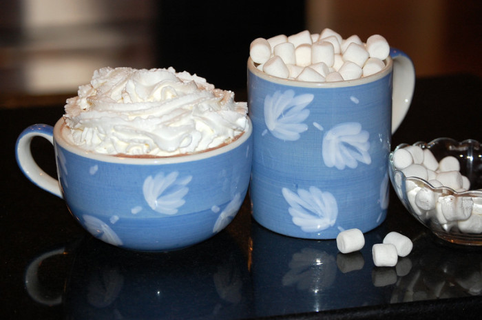 Hot Chocolate with Whipped Cream and Marshmallows by Robin Dance