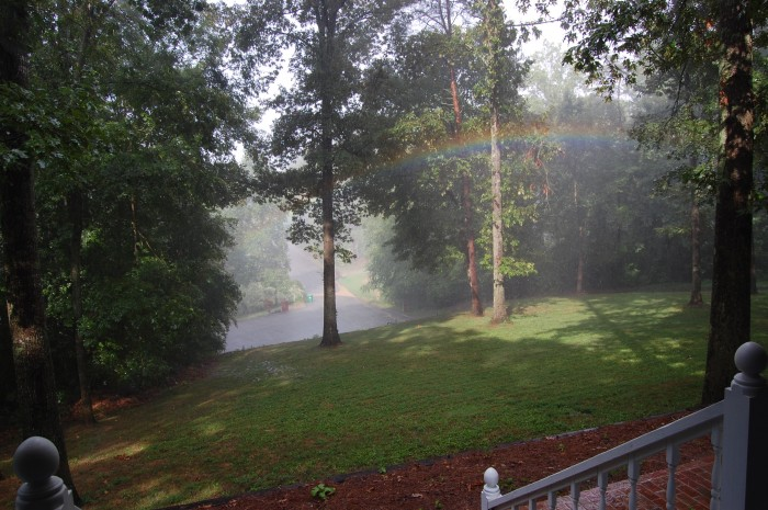 Rainbow in my front yard